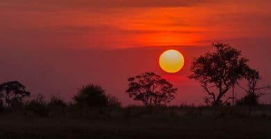 Viajar a Botsuana