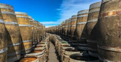 Qué ver y hacer en La Rioja